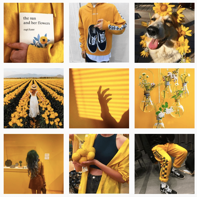 Yellow color palette on Instagram min